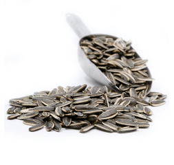 Sunflower Seed - Non Salty