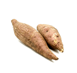 Sweet Potato per crton