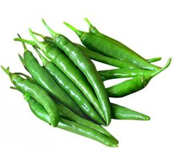Green Chili Pepper Per Kg - Jordan