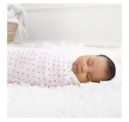 Aden and Anais Swaddles 2-pack - Fluro Pink
